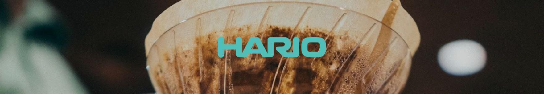 Hario Krus - V60 kompatible
